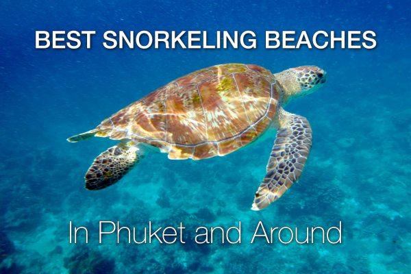 10 Best Snorkeling Beaches in Phuket and Around