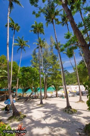 freedom-beach-phuket1