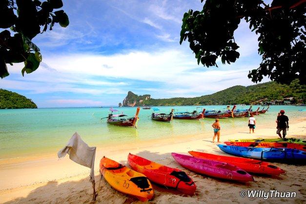 Renting Kayaks on Loh Dalum Beach in Phi Phi Island