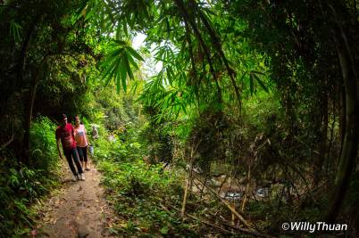 bang-pae-waterfall-phuket
