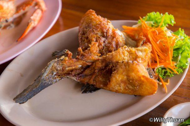 bang-mud-fish