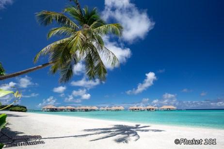 como-maalifushi-resort-maldives-14