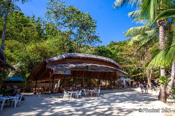 banana-beach-coral-island
