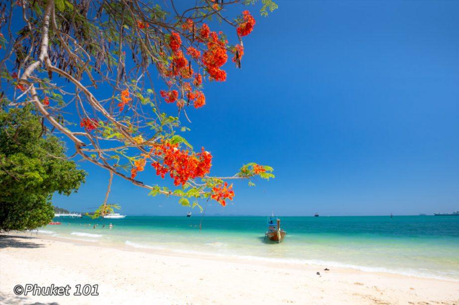 Cape Panwa Beach