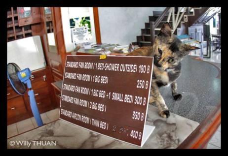 on-on-hotel-phuket-reception 2