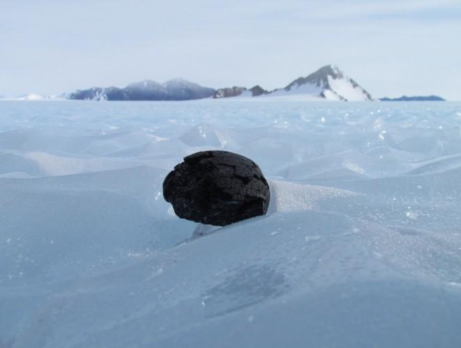 antarctic-meteorite.jpg