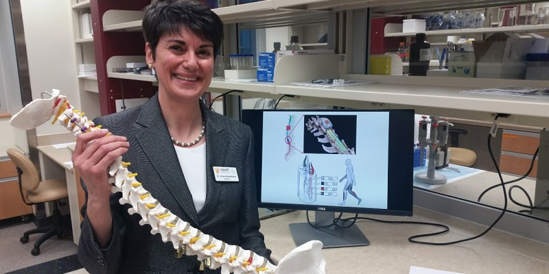 Biomedical engineering researcher Vivian Mushahwar is developing spinal implants that could one day restore the ability to stand and walk in patients with paralysis. (Photo: Ross Neitz)