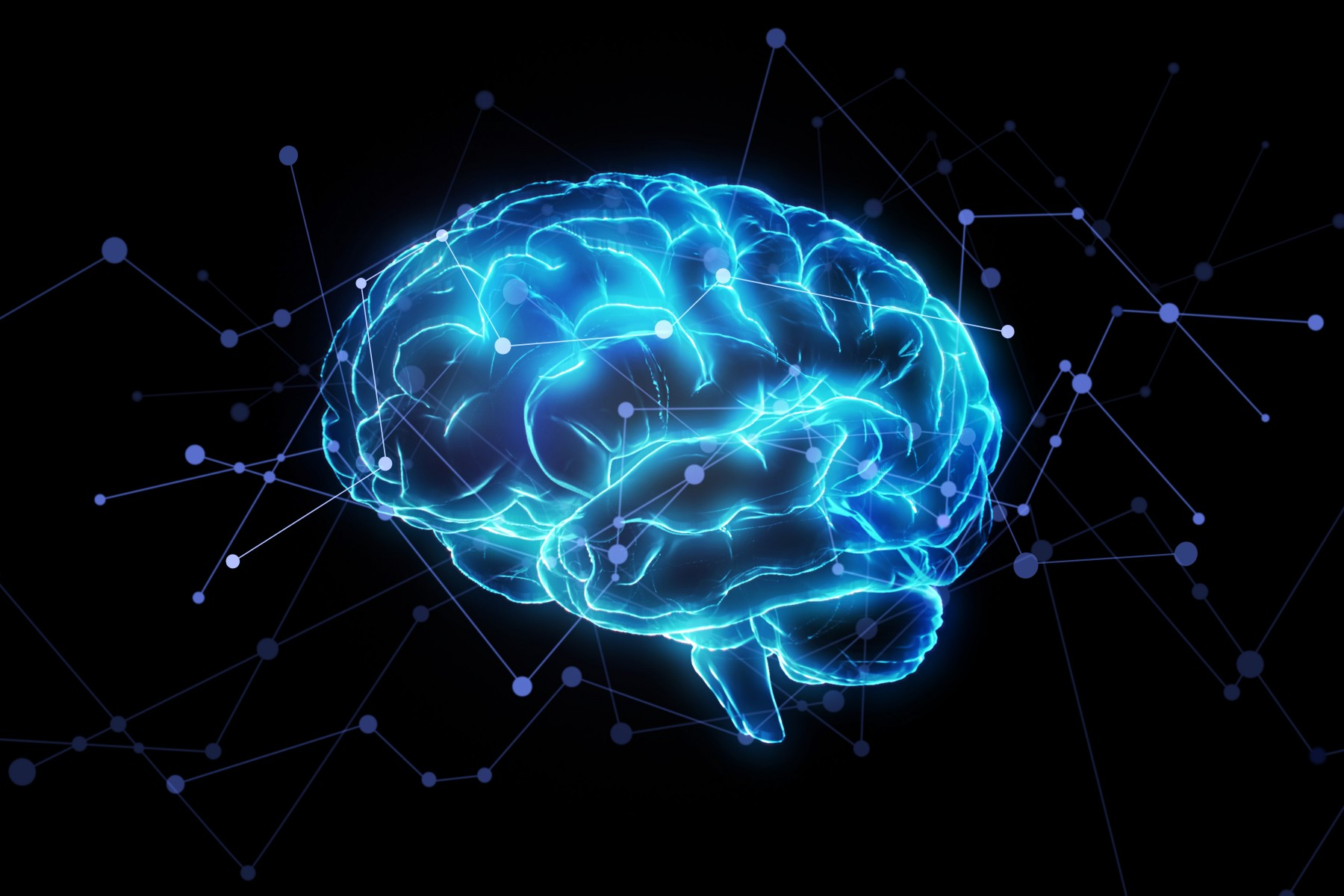 Image result for neurons
