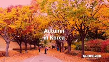 ShopBack_blog_korea-autumn