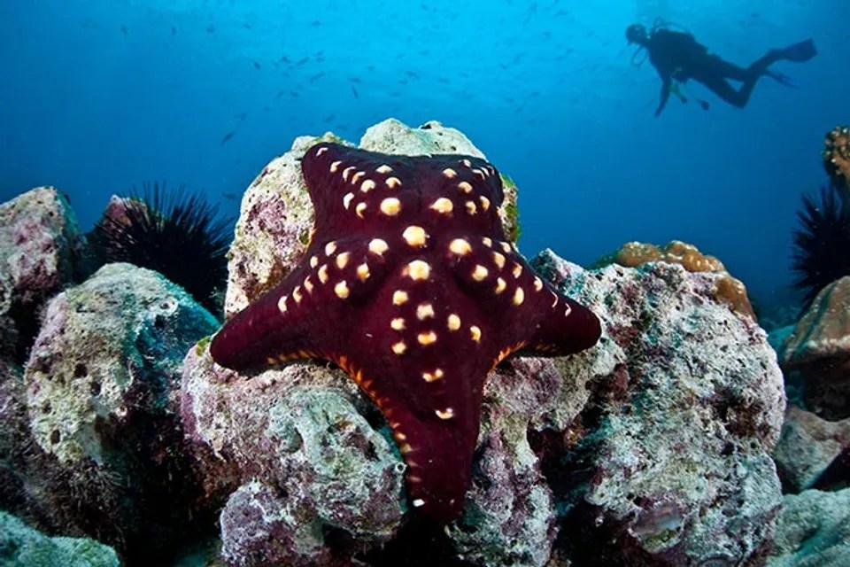 Los 10 lugares más espectaculares de Costa Rica