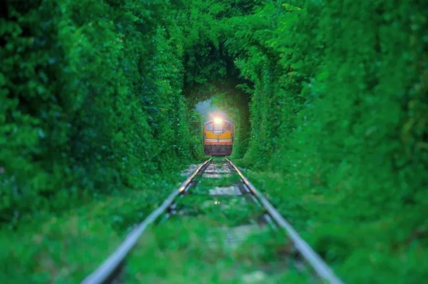 Vista del tunnel dell'amore