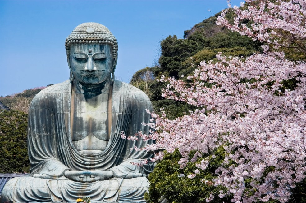 Fly cheap flights to Japan
