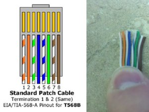 Make a Cat6 Patch Cable  Networking  Spiceworks
