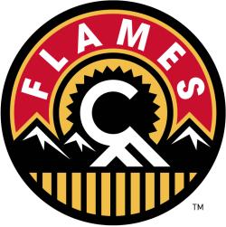 Image result for calgary flames shoulder logo
