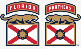 Image result for florida panthers jersey home and road