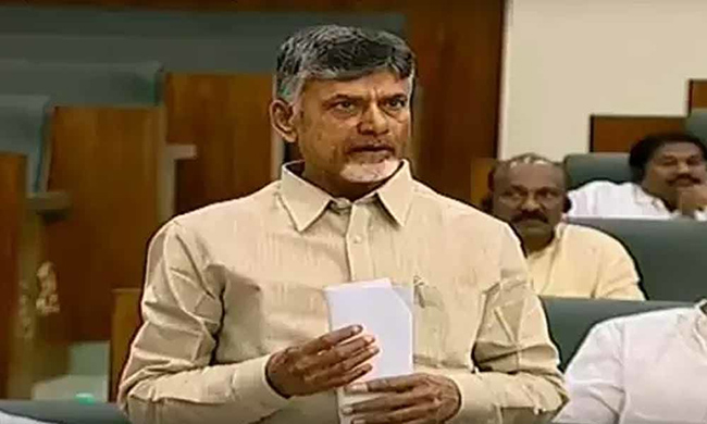 TDP WIll Support English Medium-Says Chandrababu In Assembly