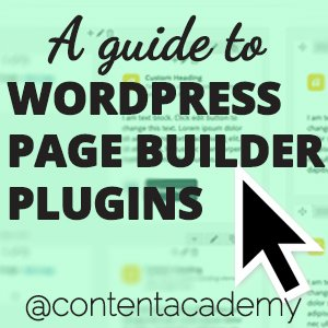 WordPress Page Builder Plugins on a $100 Budget