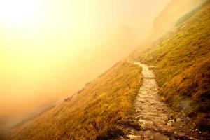 crooked foggy mountain path