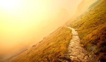 crooked foggy mountain path