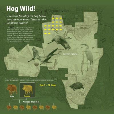 Paynes Prairie Preserve Visitor Center Florida Department of Environmental Protection, Micanopy, Florida the interactive explores invasive species
