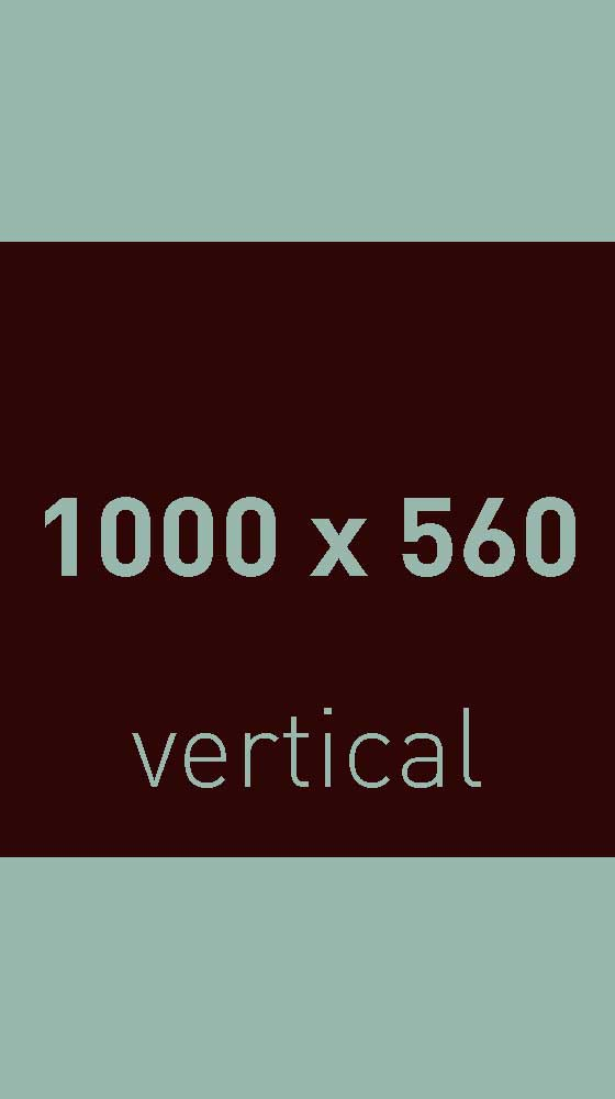 image-test-1000-vertical