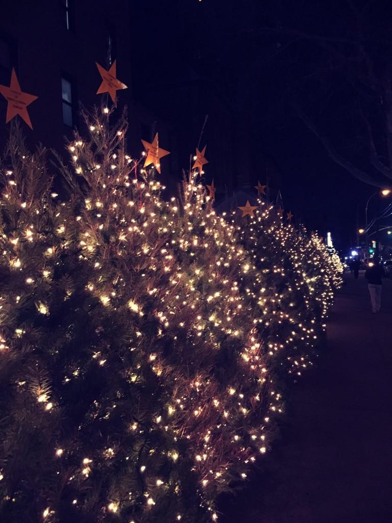 Contented Gypsy   Neighborhood Christmas Trees
