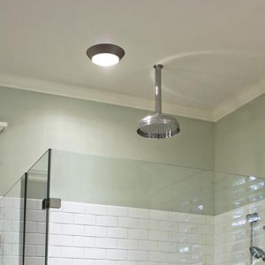 Bathroom Lighting at The Home Depot Bathroom Flushmount Lighting
