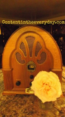 Old Radio and a Fresh Rose