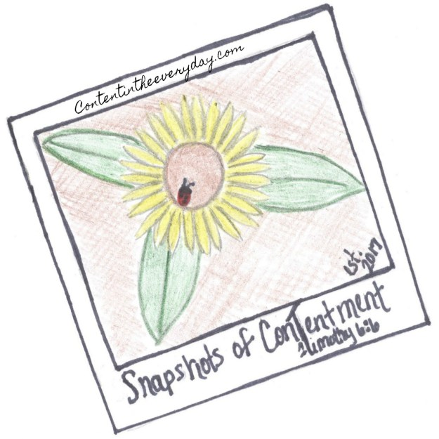 Snapshots of Contentment logo