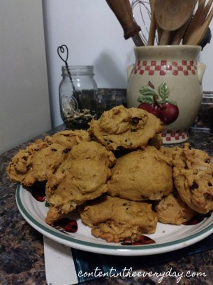 Pumpkin Nut Cookies