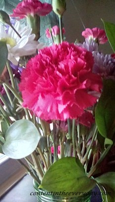 Pink Carnation_with text