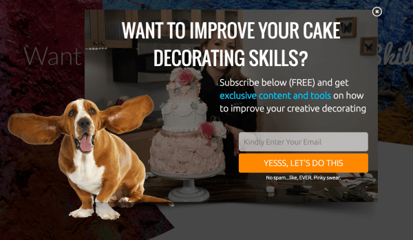 Creativiu-Cake-Decorating-Offer