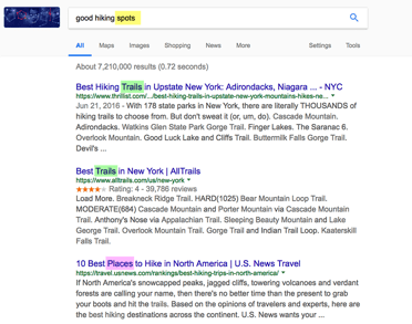 google-search-results-example