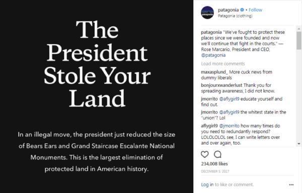 patagonia-stance-taking-example