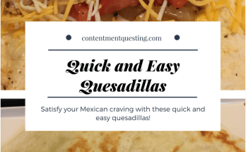 Quick and Easy Quesadillas