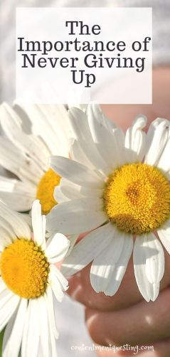 importance of never giving up pin template 1 flowers