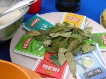 Coca Tea Leaves