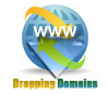Dropping Domains Finder