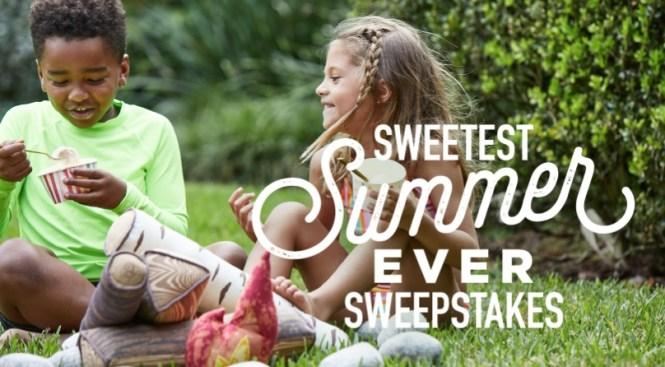 Hudsonville Ice Cream Sweetest Summer Giveaway