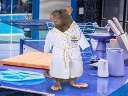 BBB 20': Por que o rato Genilson é o melhor personagem da reta final -  24/04/2020 - UOL TV e Famosos