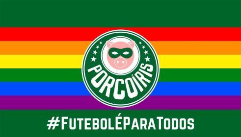 Bandeira LGBTQIA+ no Allianz é comemorada, mas torcida ainda vê hostilidade  - 16/11/2020 - UOL Esporte
