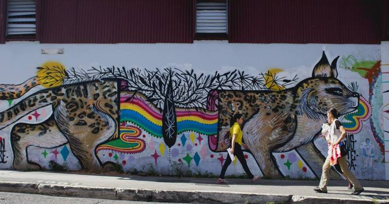 Costa Rica en la Pared invita a un safari por la capital