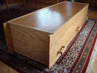 bookcasecoffin