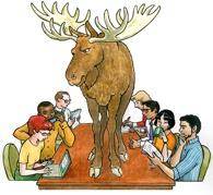 moose-195