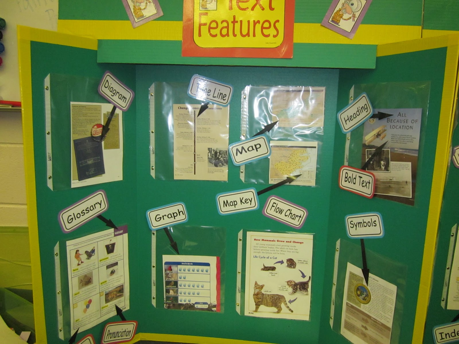 Nonfiction Text Features Worksheet 4th Grade