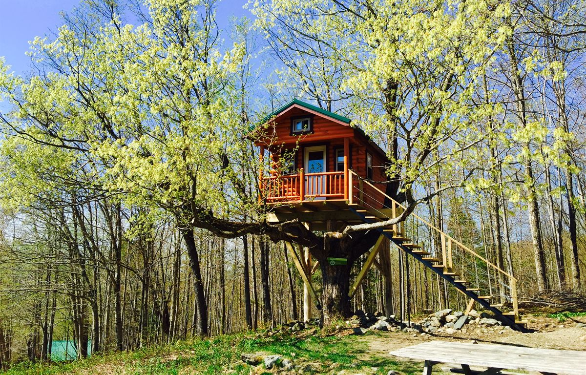 How To Build A Treehouse DIY Tips Amp Cost Guide
