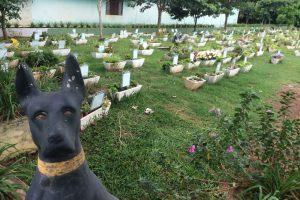 cemiterio-de-animais-1