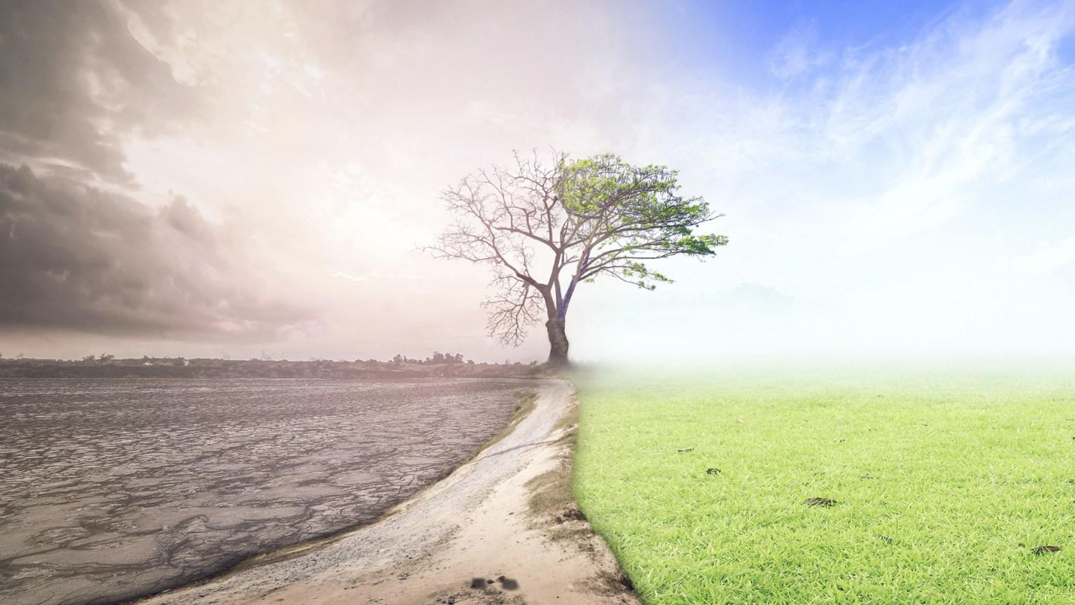 Un lado del paisaje esta contaminado son gases de efecto invernadero, el otro lado es verde y cielo azul. Efecto del cambio climático