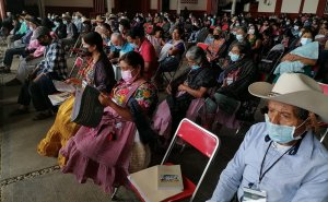 participación de las comunidades y pueblos indígenas en la toma de decisiones mediante consulta ciudadana