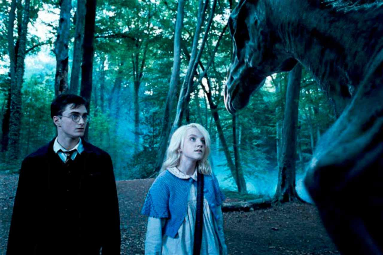 Crítica Harry Potter y la Orden del Fénix